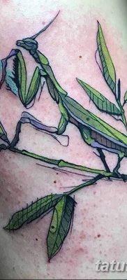 фото тату богомол от 20.04.2018 №028 – mantis tattoo – tatufoto.com