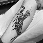 фото тату богомол от 20.04.2018 №029 - mantis tattoo - tatufoto.com