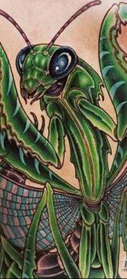 фото тату богомол от 20.04.2018 №037 – mantis tattoo – tatufoto.com
