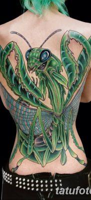фото тату богомол от 20.04.2018 №038 – mantis tattoo – tatufoto.com