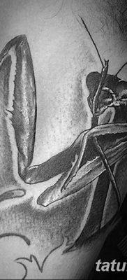 фото тату богомол от 20.04.2018 №040 – mantis tattoo – tatufoto.com