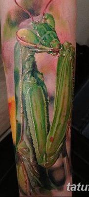 фото тату богомол от 20.04.2018 №041 – mantis tattoo – tatufoto.com