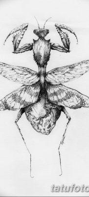 фото тату богомол от 20.04.2018 №060 – mantis tattoo – tatufoto.com