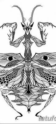 фото тату богомол от 20.04.2018 №067 – mantis tattoo – tatufoto.com