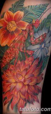 фото тату богомол от 20.04.2018 №073 – mantis tattoo – tatufoto.com