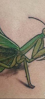 фото тату богомол от 20.04.2018 №077 – mantis tattoo – tatufoto.com