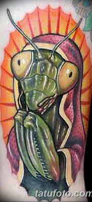фото тату богомол от 20.04.2018 №080 – mantis tattoo – tatufoto.com