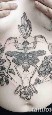 фото тату богомол от 20.04.2018 №083 – mantis tattoo – tatufoto.com