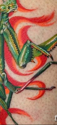 фото тату богомол от 20.04.2018 №084 – mantis tattoo – tatufoto.com