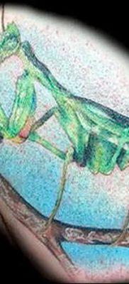 фото тату богомол от 20.04.2018 №085 – mantis tattoo – tatufoto.com