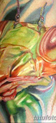 фото тату богомол от 20.04.2018 №087 – mantis tattoo – tatufoto.com