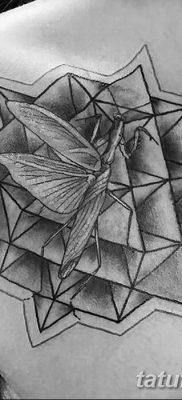 фото тату богомол от 20.04.2018 №091 – mantis tattoo – tatufoto.com