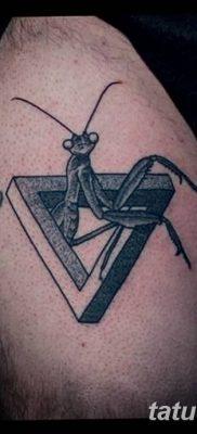 фото тату богомол от 20.04.2018 №095 – mantis tattoo – tatufoto.com