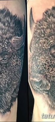фото тату буйвол от 16.04.2018 №029 – Buffalo Tattoo – tatufoto.com