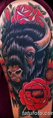 фото тату буйвол от 16.04.2018 №056 – Buffalo Tattoo – tatufoto.com