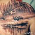 фото тату буйвол от 16.04.2018 №068 - Buffalo Tattoo - tatufoto.com