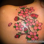 фото тату жасмин от 22.04.2018 №053 - tattoo jasmine - tatufoto.com