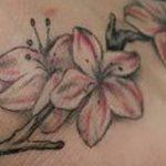 фото тату жасмин от 22.04.2018 №058 - tattoo jasmine - tatufoto.com