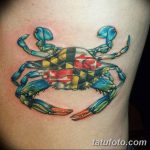 фото тату краб от 18.04.2018 №016 - tattoo crab - tatufoto.com