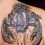 фото тату краб от 18.04.2018 №158 - tattoo crab - tatufoto.com