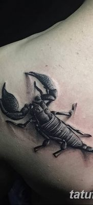 фото тату скорпион от 24.04.2018 №003 – tattoo scorpion – tatufoto.com