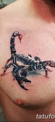 фото тату скорпион от 24.04.2018 №029 – tattoo scorpion – tatufoto.com