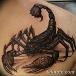 фото тату скорпион от 24.04.2018 №034 - tattoo scorpion - tatufoto.com