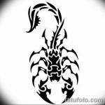 фото эскиз тату скорпион от 24.04.2018 №004 - sketch of a scorpion tattoo - tatufoto.com