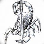 фото эскиз тату скорпион от 24.04.2018 №007 - sketch of a scorpion tattoo - tatufoto.com