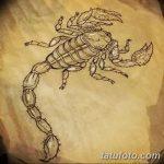 фото эскиз тату скорпион от 24.04.2018 №008 - sketch of a scorpion tattoo - tatufoto.com