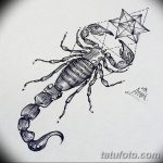 фото эскиз тату скорпион от 24.04.2018 №012 - sketch of a scorpion tattoo - tatufoto.com