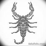 фото эскиз тату скорпион от 24.04.2018 №019 - sketch of a scorpion tattoo - tatufoto.com