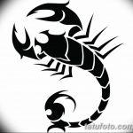 фото эскиз тату скорпион от 24.04.2018 №020 - sketch of a scorpion tattoo - tatufoto.com