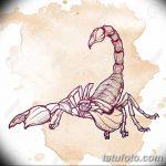фото эскиз тату скорпион от 24.04.2018 №028 - sketch of a scorpion tattoo - tatufoto.com 3634