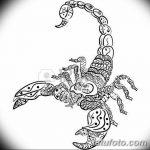 фото эскиз тату скорпион от 24.04.2018 №032 - sketch of a scorpion tattoo - tatufoto.com