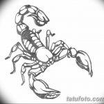 фото эскиз тату скорпион от 24.04.2018 №035 - sketch of a scorpion tattoo - tatufoto.com