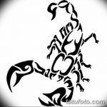 фото эскиз тату скорпион от 24.04.2018 №036 - sketch of a scorpion tattoo - tatufoto.com