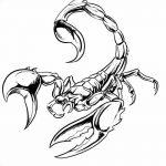 фото эскиз тату скорпион от 24.04.2018 №037 - sketch of a scorpion tattoo - tatufoto.com