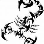 фото эскиз тату скорпион от 24.04.2018 №039 - sketch of a scorpion tattoo - tatufoto.com