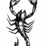 фото эскиз тату скорпион от 24.04.2018 №042 - sketch of a scorpion tattoo - tatufoto.com
