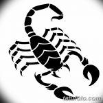 фото эскиз тату скорпион от 24.04.2018 №047 - sketch of a scorpion tattoo - tatufoto.com