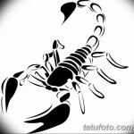 фото эскиз тату скорпион от 24.04.2018 №050 - sketch of a scorpion tattoo - tatufoto.com