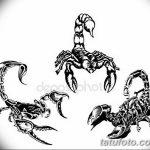 фото эскиз тату скорпион от 24.04.2018 №056 - sketch of a scorpion tattoo - tatufoto.com