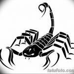 фото эскиз тату скорпион от 24.04.2018 №057 - sketch of a scorpion tattoo - tatufoto.com