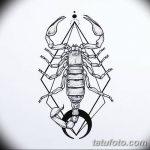 фото эскиз тату скорпион от 24.04.2018 №058 - sketch of a scorpion tattoo - tatufoto.com