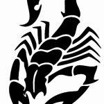 фото эскиз тату скорпион от 24.04.2018 №059 - sketch of a scorpion tattoo - tatufoto.com