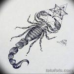 фото эскиз тату скорпион от 24.04.2018 №060 - sketch of a scorpion tattoo - tatufoto.com