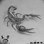 фото эскиз тату скорпион от 24.04.2018 №065 - sketch of a scorpion tattoo - tatufoto.com