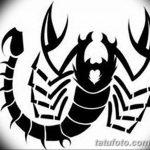 фото эскиз тату скорпион от 24.04.2018 №067 - sketch of a scorpion tattoo - tatufoto.com