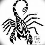 фото эскиз тату скорпион от 24.04.2018 №068 - sketch of a scorpion tattoo - tatufoto.com